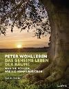[Peter Wohlleben: Das geheime Leben der Bäume]